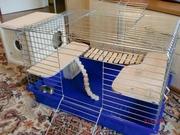 клетка для шиншиллы новая клетка,  сенница,  мостик,  лестница,  домик,  поил