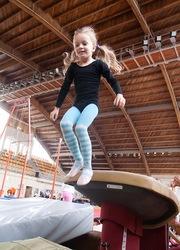 детский оздоровительный клуб спортивной и художественной гимнастики