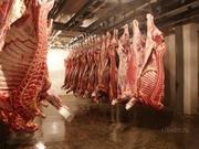 продам мясо свинина!продам свинину самый лучший!