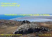 Палаточный лагерь в Крыму 2013