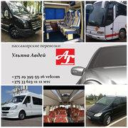 аренда VIP микроавтобусов 5-21 место,  пассажирские перевозки,  трансфер