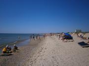 Отдых в пансионате Роза ветров у Черного моря Дешево с удобствами