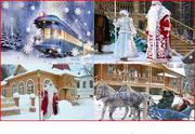 Новогодняя сказка в Беловежской пуще. Едем по Ж.Д.
