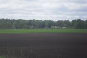 отдых на хуторе в налибоцкой пуще