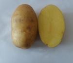 Картофель домашний с бесплатной доставкой по Минску