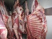 Продаем мясо курятина,  баранина,  свинина,  говядина.