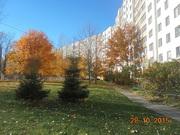 2 комнатная квартира в деловом центре Минска
