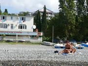 Отдых в Сочи . Гостиница в 100 метрах от моря