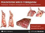 Реализуем мясо говядины.