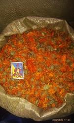 Продам календулу махровую (цветок)