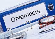 Бухгалтерские услуги для ИП и (или) микроорганизаций Минск