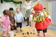 Мини детский сад,  присмотр за детьми в Каменной Горке