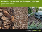 Мульча из сосновой коры различных фракций в г. Минске