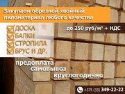 Закупаем пиломатериал хвойных пород. Беларусь