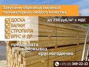 2.Закупаем доску 1, 2, 3, 4,  сорта хвойных пород по Беларуси