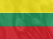 Национальная литовская виза категории D,  360/360