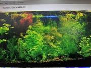 Удобрения(микро,  макро,  калий,  железо). Удо для аквариумных растений..