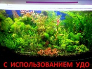 Удобрения -(микро,  макро,  калий,  железо) для аквариумных растений--