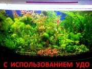 Удобрения(микро,  макро,  калий,  железо) удо для аквариумных растений--