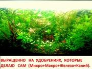 Удобрения(микро,  макро,  калий,  железо) удо для аквариумных растений---