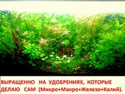 Удобрения(микро,  макро,  калий,  железо) для аквариумных растений==