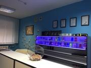 Сервисный центр ТОПСЭТ по ремонту телефонов,  ноутбуков,  планшетов