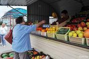 Продам лоток по продаже овощей и фруктов в минске