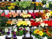 Продается прибыльный магазин цветов.