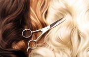 Продается готовый бизнес - сеть салонов парикмахерских в Минске