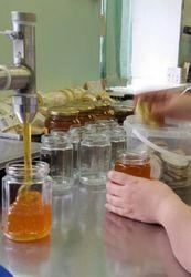 Разнорабочие на производство мёда