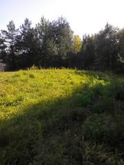 Земельный участок 12 соток возле леса