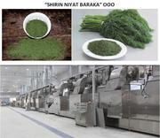 Сушеные овощи и зелень от производителя